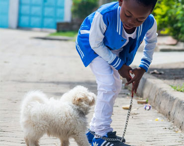 Boy and Small dog